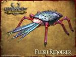 Flesh Renderer
