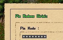 Pin Kodu Koruması